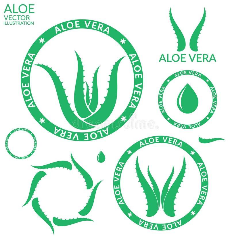 Vera aloesu ilustracji