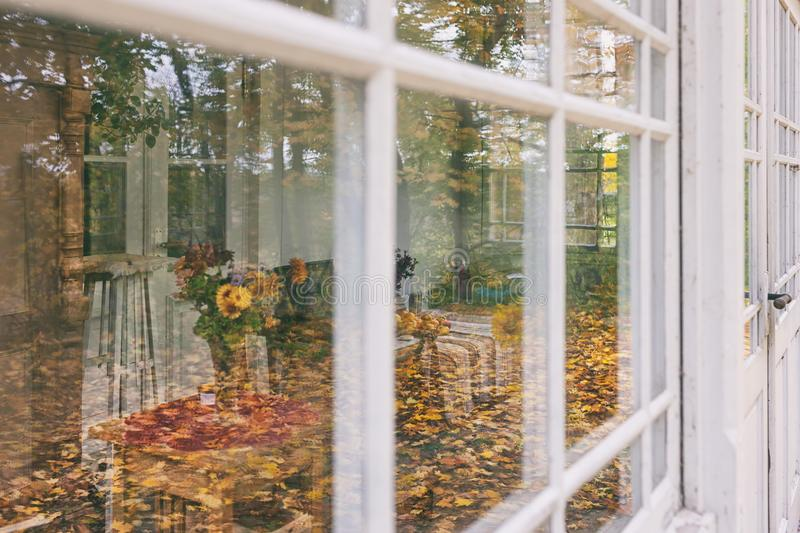 Veranda of summer house in autumn. Flowers on the table Summer veranda of an old house with reflection in the windows of the yellow autumn woods at the end of stock photography