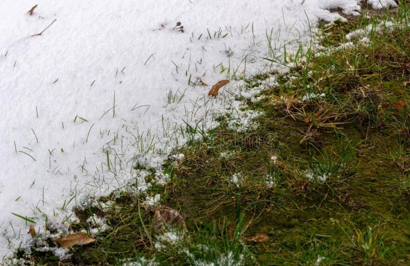 Verandering van de winter in de lente - overgang van seizoenen stock foto