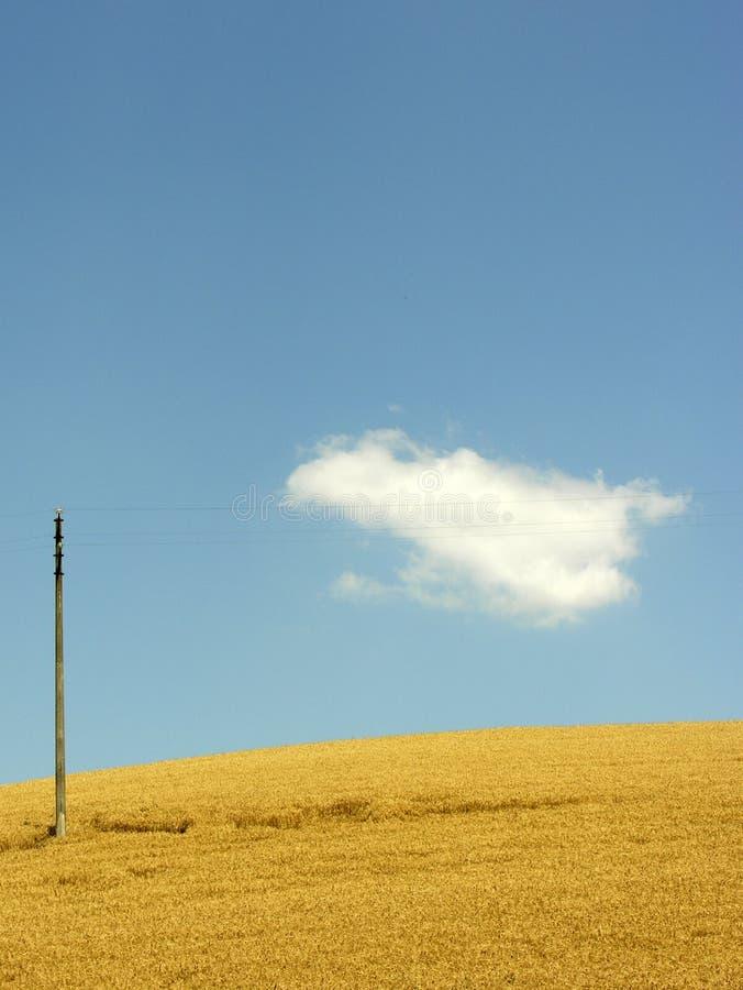 Download Verano imagen de archivo. Imagen de cornfield, azul, poste - 177743
