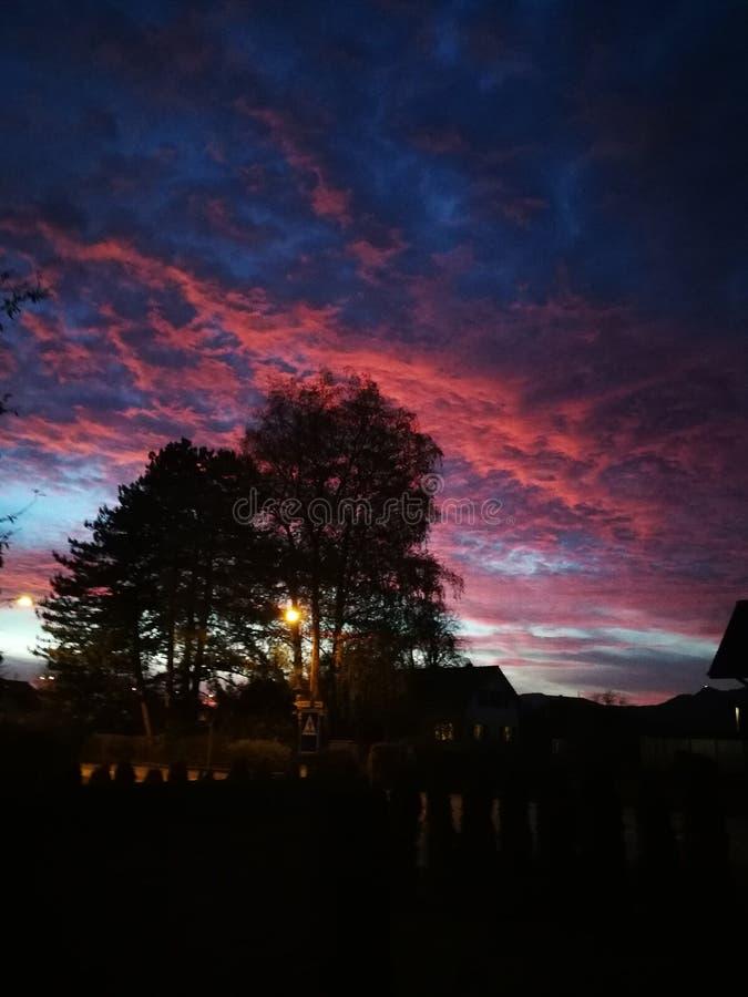 verano azul de la linterna de la luz del árbol de la quemadura del fuego rojo del cielo fotografía de archivo libre de regalías