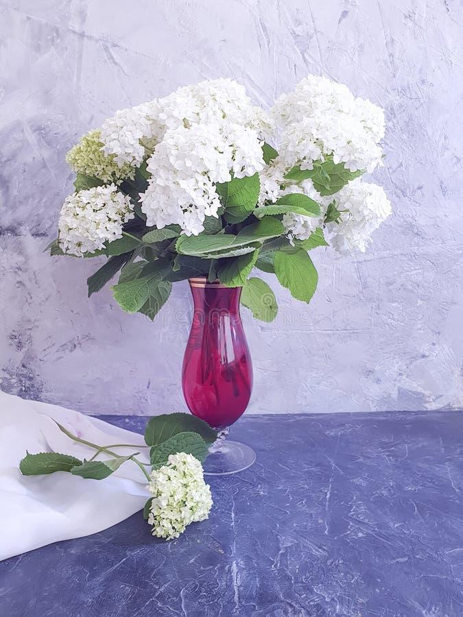 Verano de la flor de la hortensia del florero en fondo concreto gris imagen de archivo libre de regalías