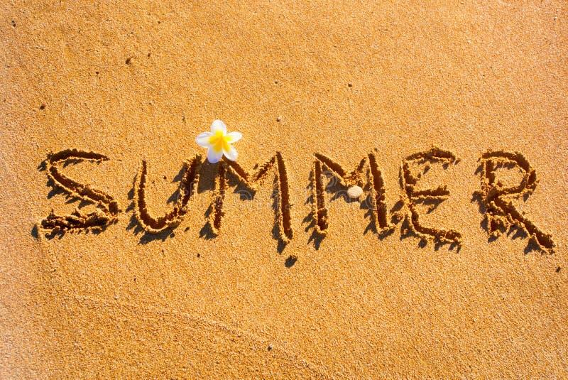 Verano de la palabra escrito en la arena de la playa con la flor foto de archivo