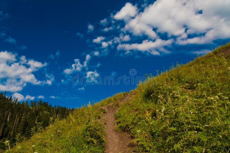 Download Verano Del Día De La Montaña Imagen de archivo - Imagen de hermoso, colina: 42425563