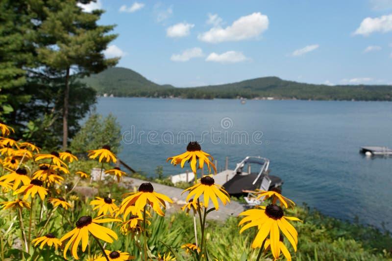 Verano en el lago fotos de archivo libres de regalías