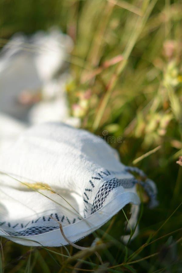 Verano en losu angeles hierba zdjęcia stock