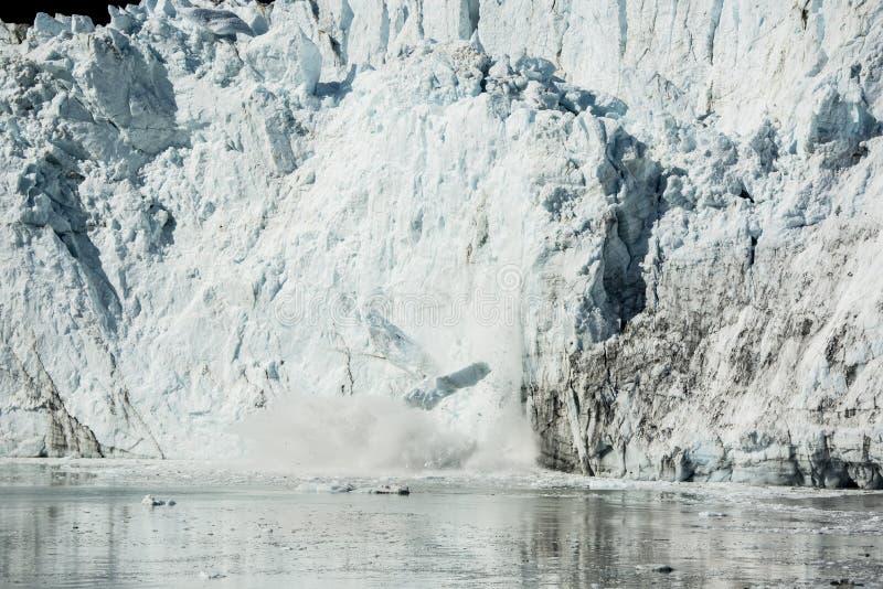 Verano en parque nacional del Glacier Bay foto de archivo