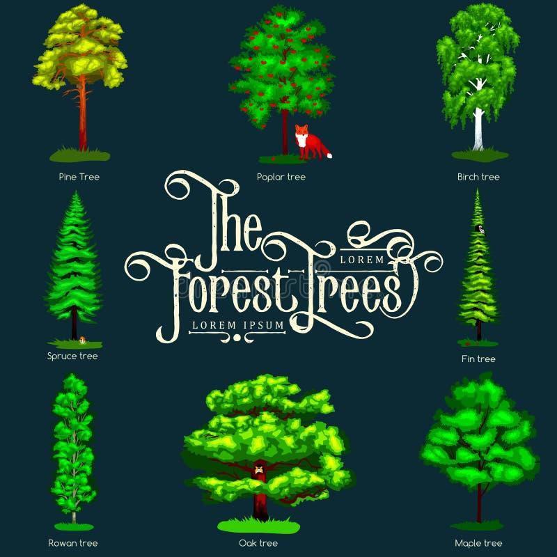 Verano Forest Tree verde en fondo oscuro Árboles determinados del vector de la historieta en parque al aire libre Árboles al aire ilustración del vector