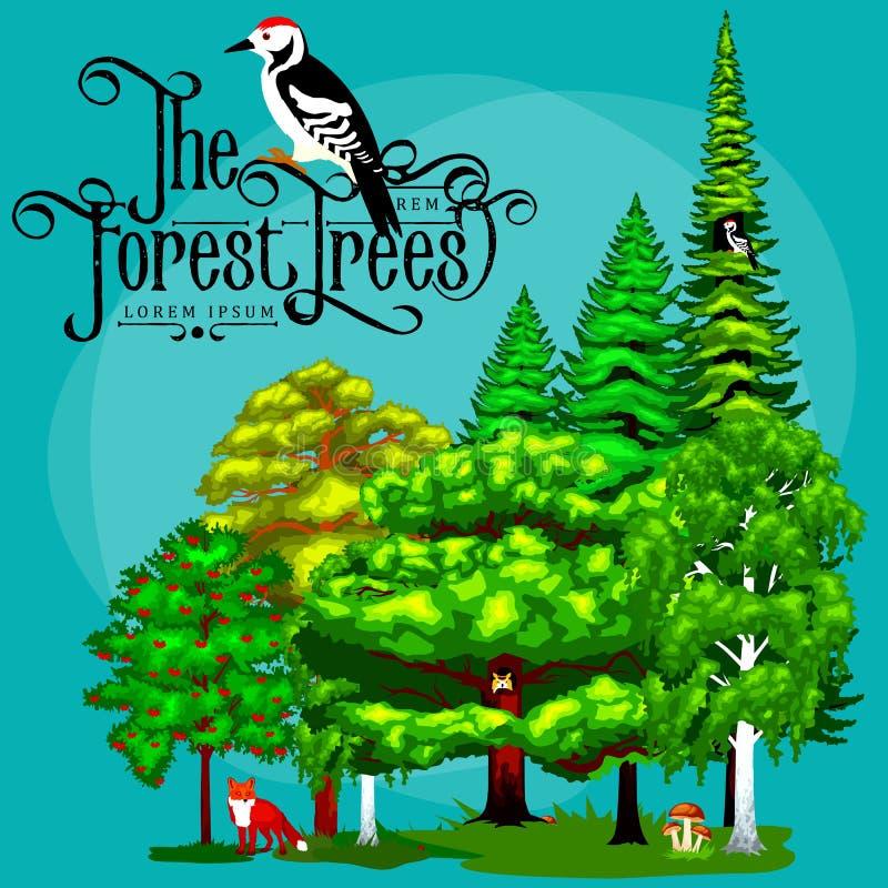 Verano Forest Tree verde y pequeños animales en naturaleza salvaje Árboles determinados del vector de la historieta en parque al  stock de ilustración