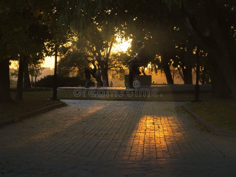 Verano o parque temprano del oto?o en la puesta del sol foto de archivo