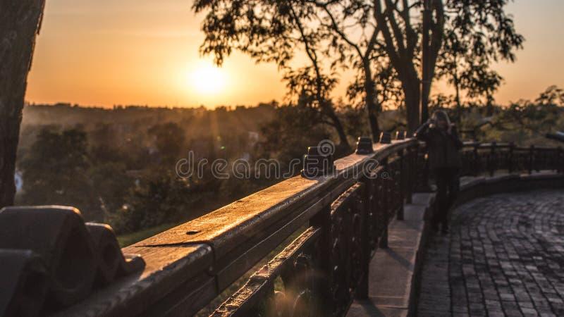 Verano o parque temprano del oto?o en la puesta del sol fotografía de archivo