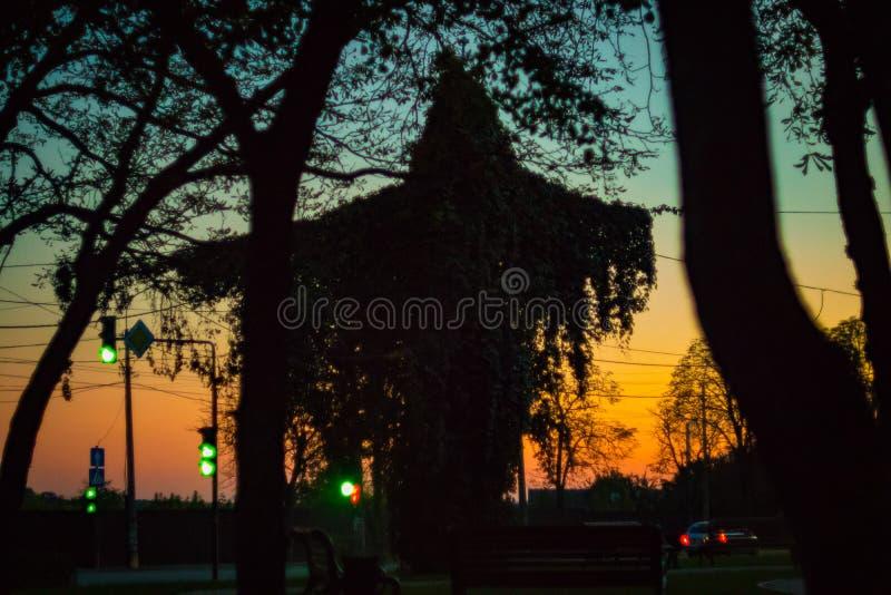 Verano o parque temprano del oto?o en la puesta del sol fotos de archivo libres de regalías