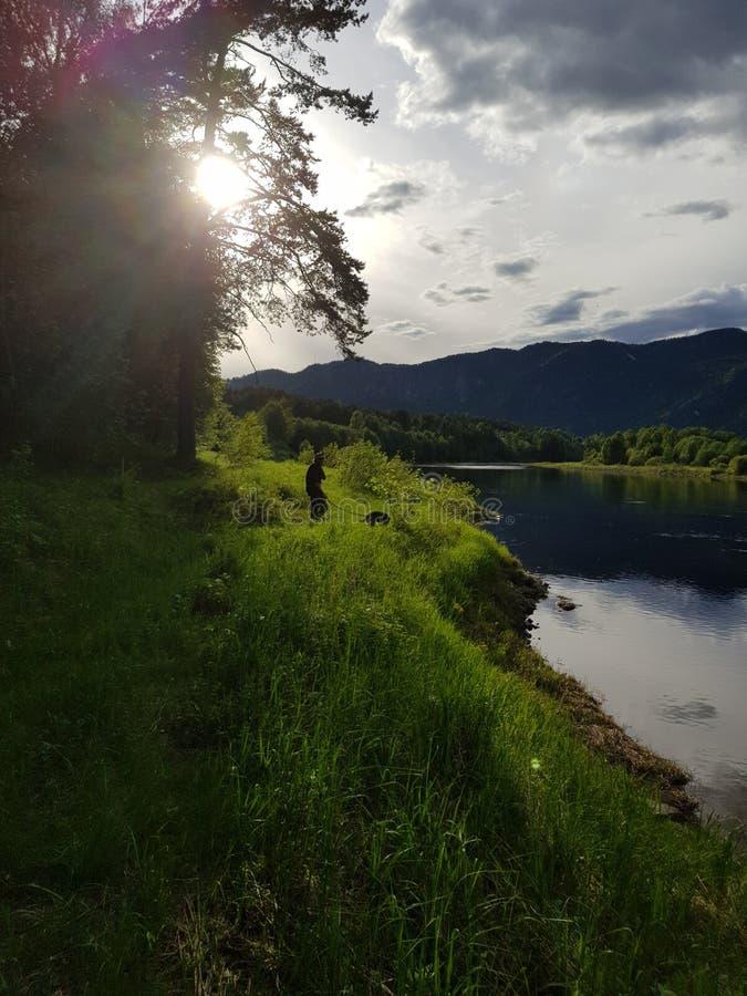 Verano por el río fotografía de archivo libre de regalías