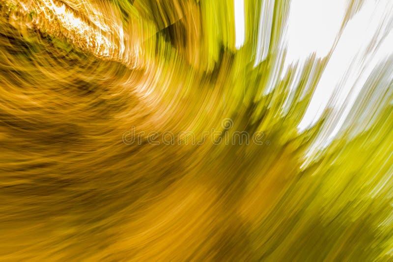 Verbazend beeld van een explosie van heldere gele, groene en witte lichten stock foto