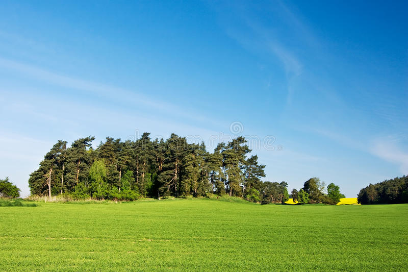 Verbazend de lenteplatteland stock afbeeldingen