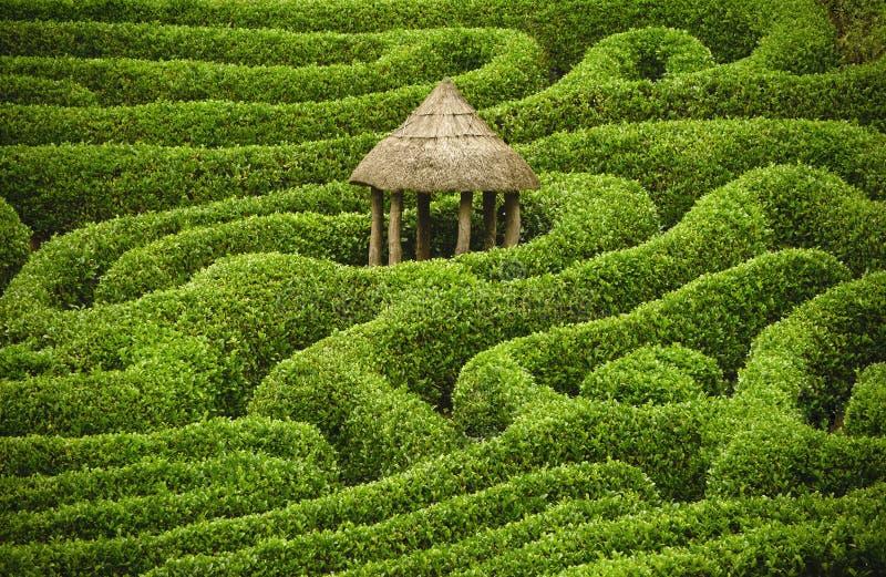 Verbazend labyrint stock foto's