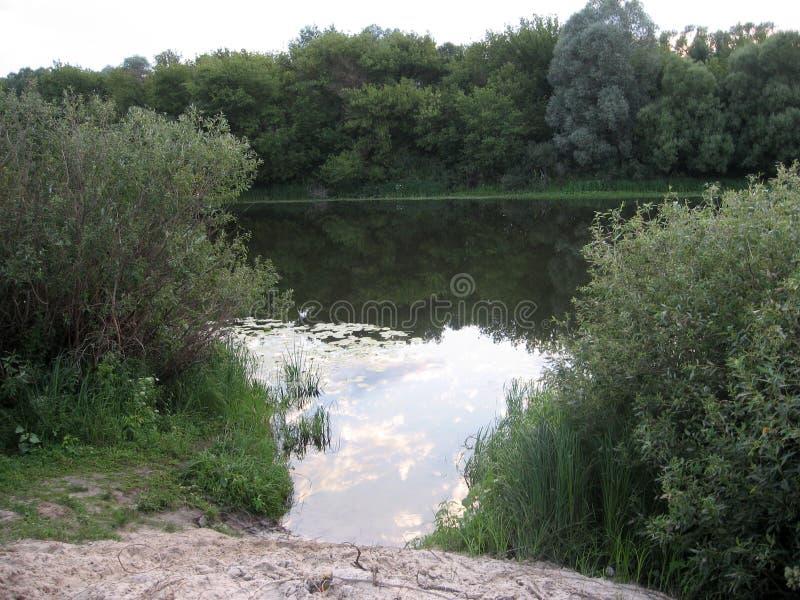 Verbazend landschap van het platteland met een rivier en een bezinning van de bewolkte hemel Oekraïens dorp royalty-vrije stock foto's
