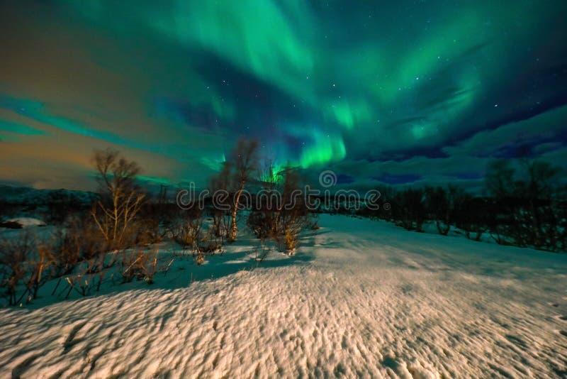 Verbazend multicolored Aurora Borealis ken ook als Noordelijke Lichten in de nachthemel over Lofoten-landschap royalty-vrije stock foto