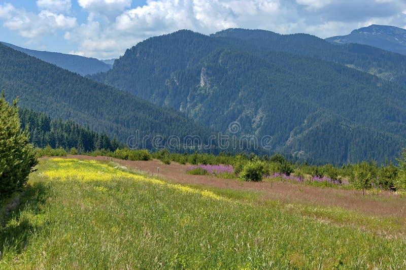 Verbazend panoramisch berguitzicht. royalty-vrije stock afbeelding