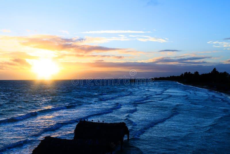 Verbazend strand bij zonsopgang of zonsondergang Achtergrond van een kust met palmen en blauw water in de vroege ochtend multicol stock foto's