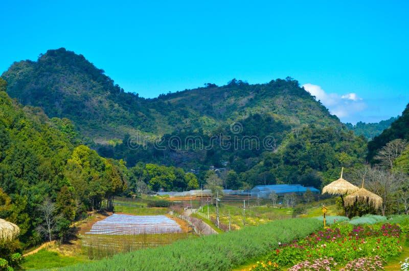 Verbazend Thailand met berg royalty-vrije stock foto's
