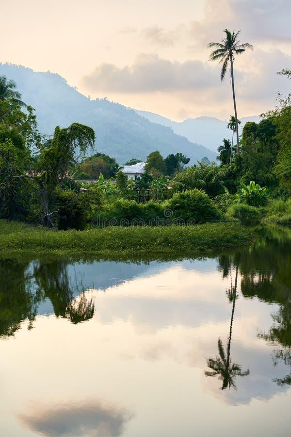 Verbazend tropisch landschap met meer, palm en bergen op zonsondergang royalty-vrije stock fotografie