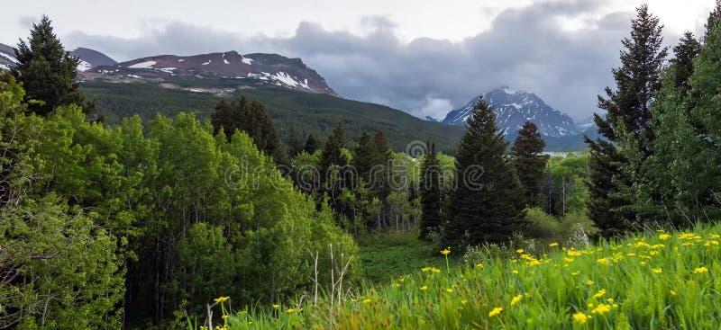 Verbazende bergen in het Nationale Park van Grand Teton stock foto