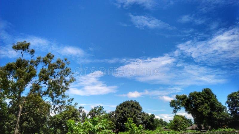 Verbazende blauwe hemel royalty-vrije stock afbeeldingen