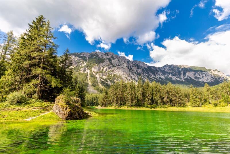 Verbazende echte groene kleur van Bergenmeer, landschap stock fotografie