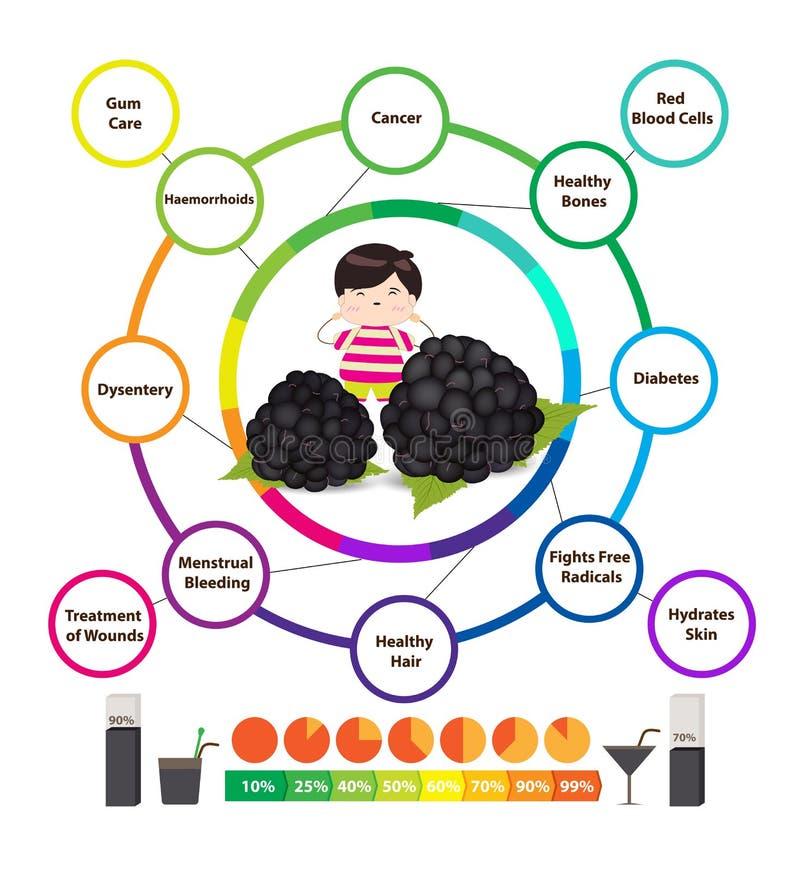 Verbazende Gezondheidsvoordelen van Braambessen stock illustratie