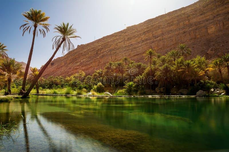 Verbazende Meer en oase met palm Wadi Bani Khalid stock fotografie