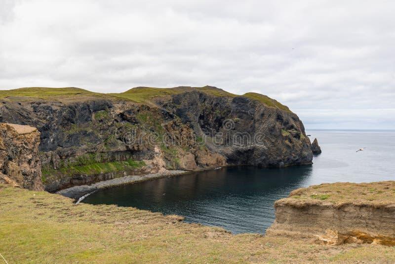 Verbazende mening aan de fantastische kustlijn van IJsland stock fotografie