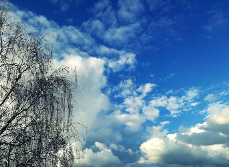 Verbazende mening van balkon blauwe hemel, perfecte witte wolken en boom royalty-vrije stock foto