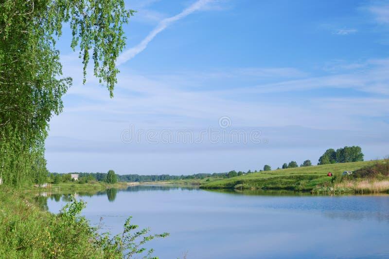 Verbazende mening van nog rivier onder berk met duidelijke hemel stock foto's