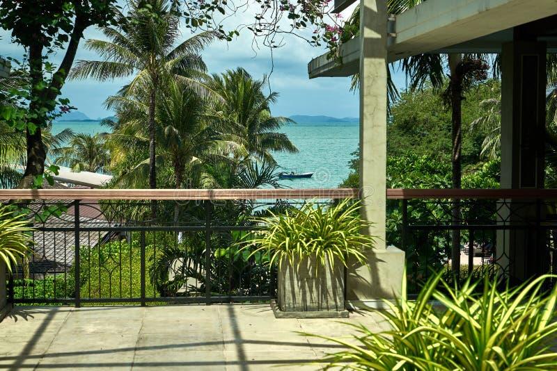 Verbazende mening van palmen, terras en het overzees ver weg stock afbeeldingen