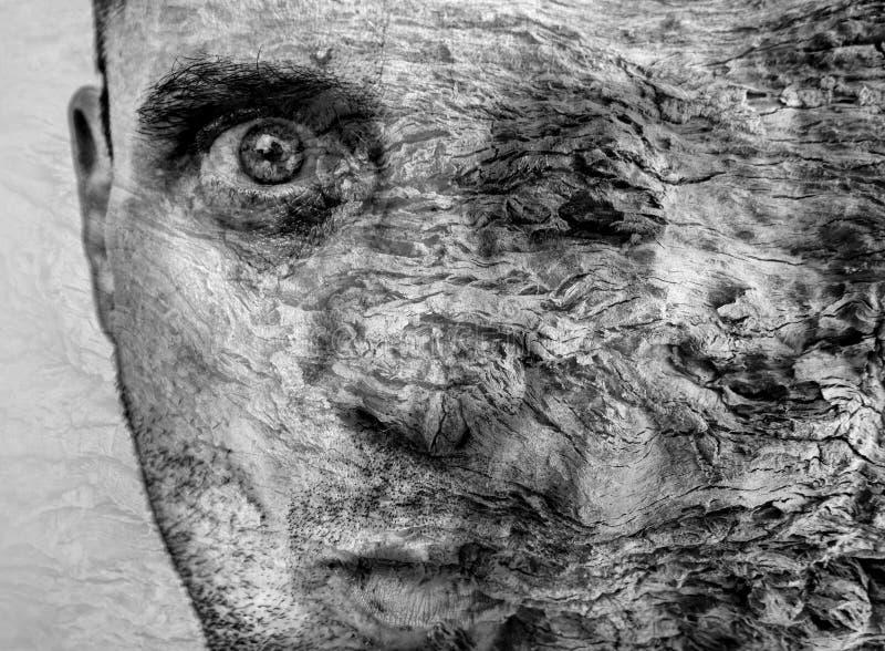 Verbazende metamorfose die van de mens boom, grafische kunst, de mooie en unieke textuur van de boomschors op menselijk gezicht w stock afbeeldingen