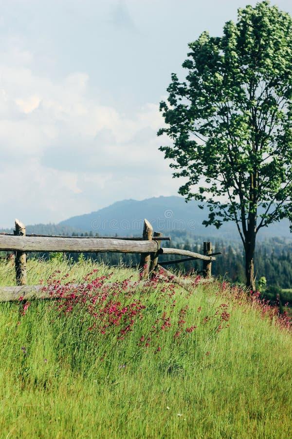 Verbazende mooie mening van bergenheuvels met houten omheining en royalty-vrije stock afbeelding