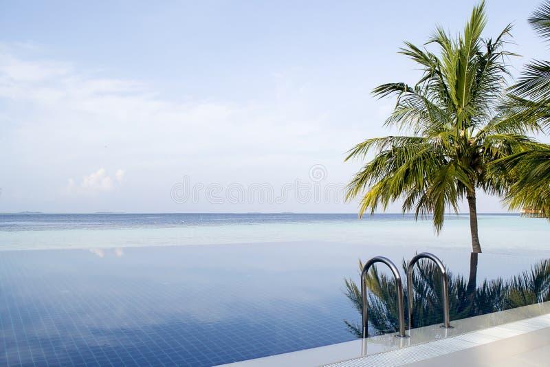 Verbazende oneindigheidspool in de Maldiven stock foto