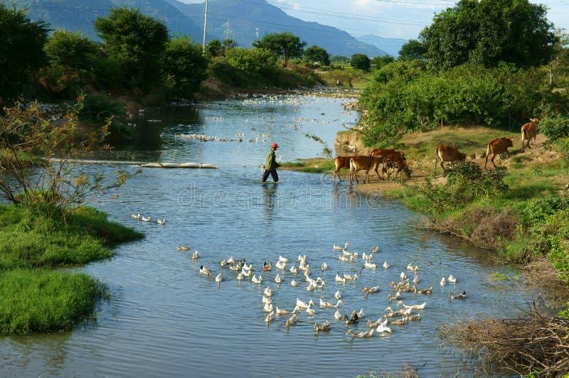 Verbazende scène, Vietnamees dorp, de reis van Vietnam stock foto's
