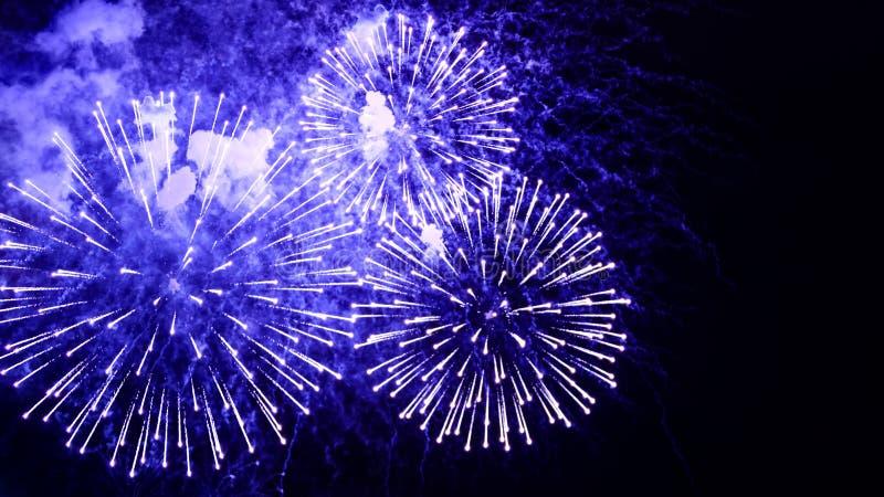 Verbazende vuurwerkbloemen op de nachthemel Helder blauwe firewo stock fotografie