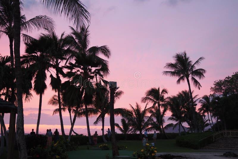 Verbazende Zonsondergang in Hawaï royalty-vrije stock foto's
