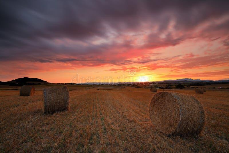 Verbazende zonsondergang over een gebied in oogsttijd royalty-vrije stock foto