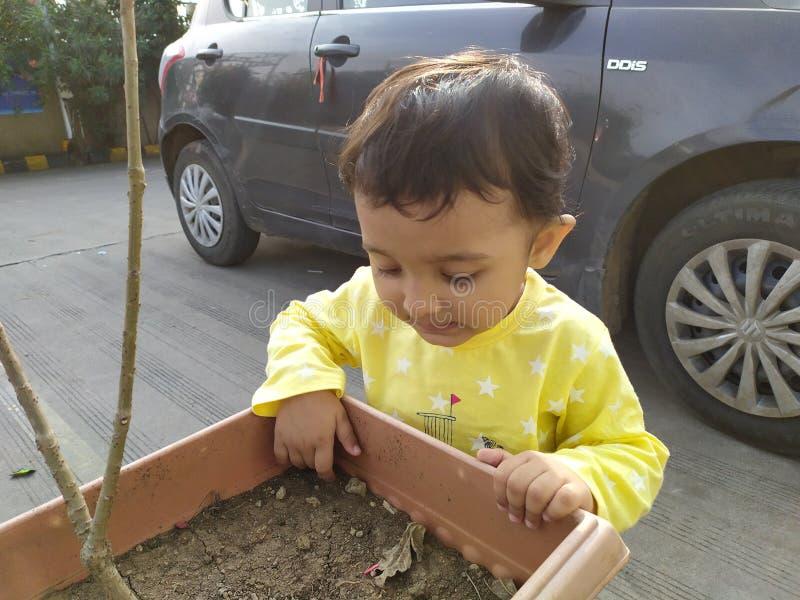 Verbazingwekkend Indiaas Toddler die bloempot controleert stock foto's