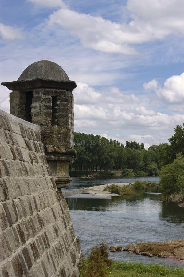 Verbena de la fortaleza de la reina, Chile Osorno imagenes de archivo