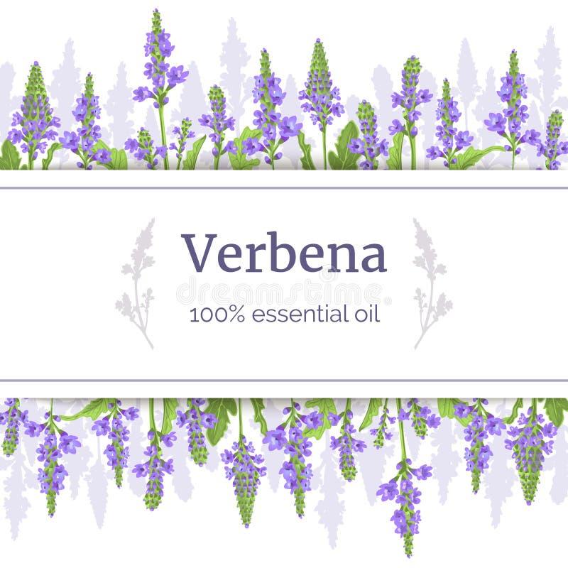 Verbenebetriebskartenschablone mit Kopienraum auf Streifen st?mme Kraut-Vektor Illustration des Verbenaceae medizinische stock abbildung
