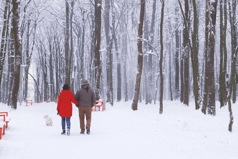 Verbinden Sie das Gehen mit einem Hund in einem schneebedeckten Park stockbild