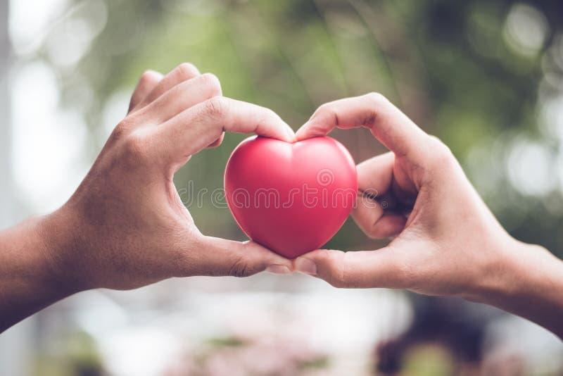 Verbinden Sie in der Liebe, die Herzsymbolform mit Finger- und Handzusammengeh?rigkeit macht Roter heart-shaped Schmucksachegesch stockbild