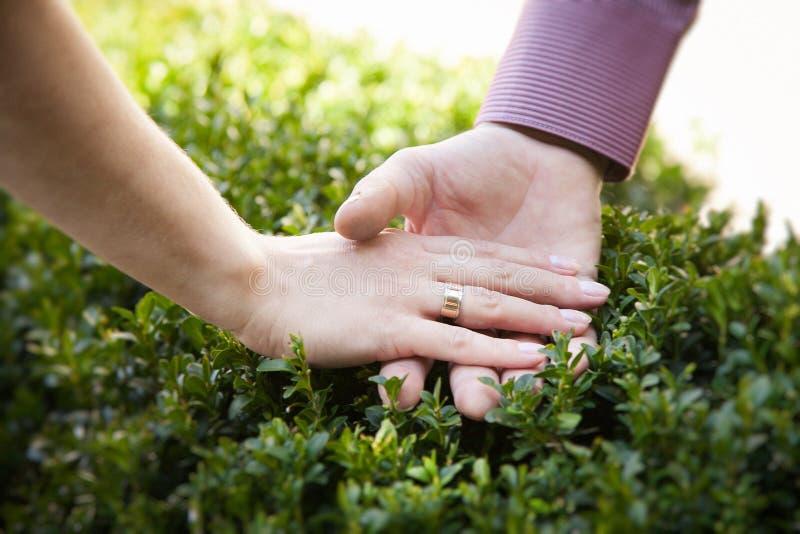 Verbinden Sie Händchenhalten mit Verlobungsringen Fröhlich ich lizenzfreie stockfotos