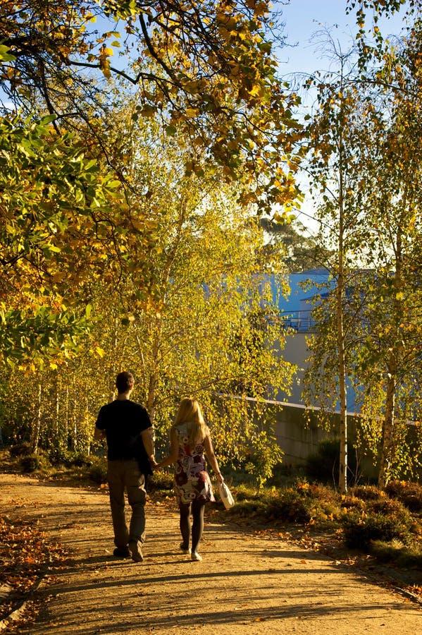 Verbinden Sie in Herbst Hand in Hand gehen stockbild