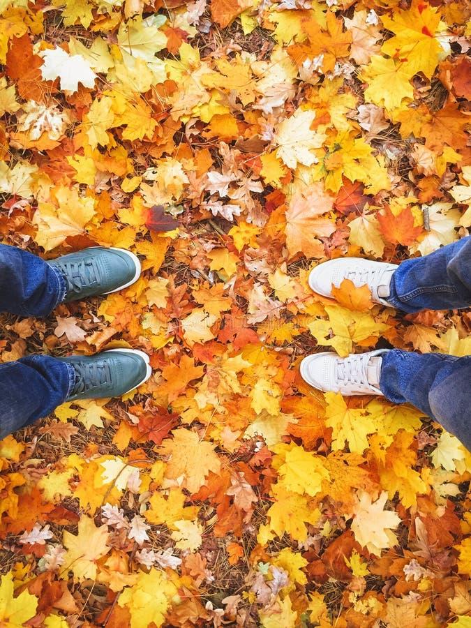 Verbinden Sie Herbstlaubhintergrund-Lebensstil Mode der männlichen Frauenbeinturnschuhe im Freien lizenzfreies stockbild